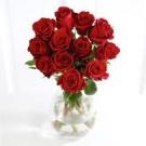 Many roses)